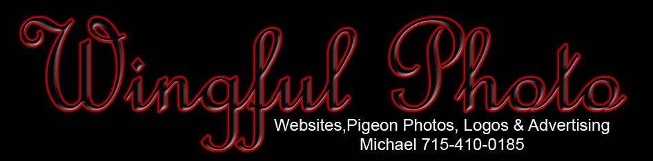 wingful_photo_logo1